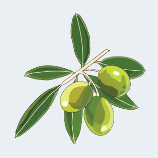 Испания, Греция: Оливки, масло, томаты, перец